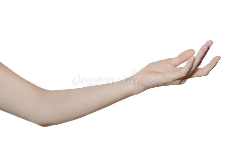 Hand en wapen dat op wit wordt geïsoleerde royalty-vrije stock afbeelding