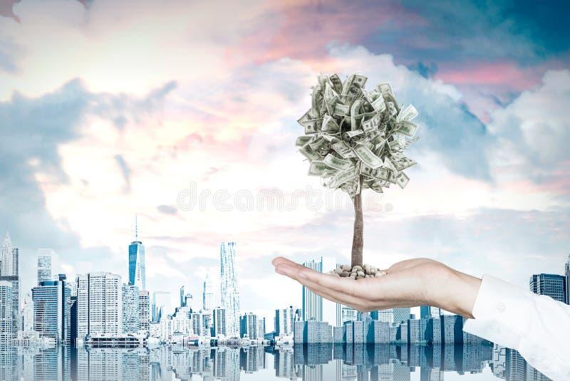 Hand för affärsman s och ett dollarträd, stad framförande 3d arkivbild