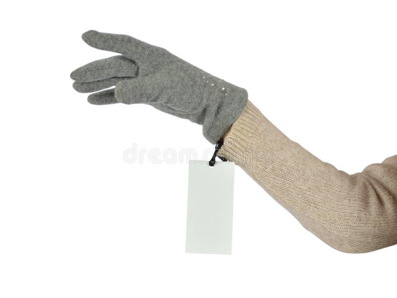 Hand för kvinna` s i en handske royaltyfri bild