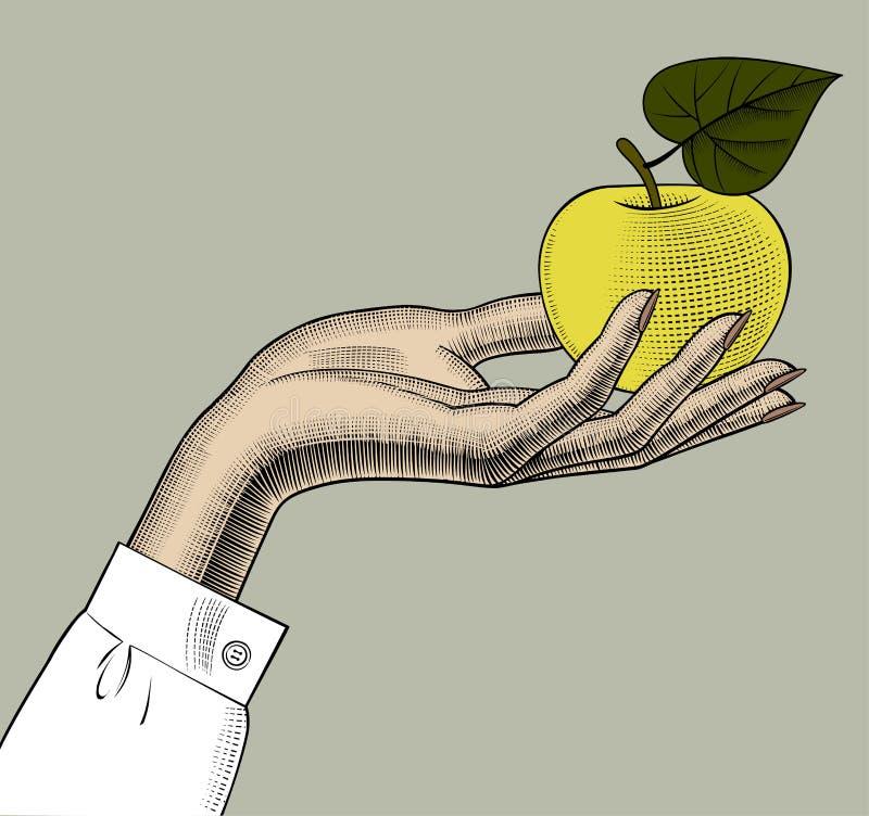 Hand för kvinna` s med ett äpple vektor illustrationer