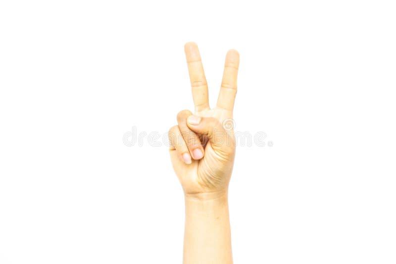 Hand för kvinna` s med två fingrar som isoleras upp på vit bakgrund arkivfoton