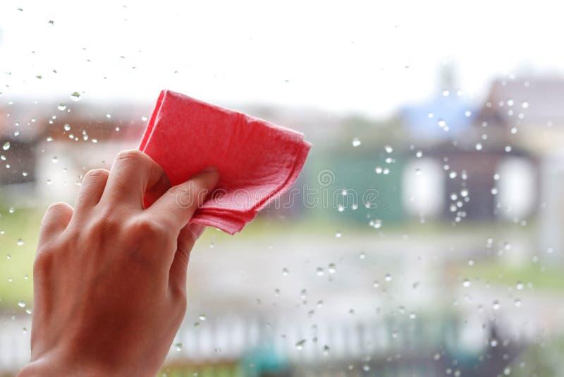 Hand för kvinna` s som torkar droppar av vatten på glass rosa tyg Closeu arkivfoto