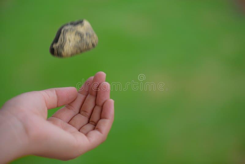 Hand för ung kvinna som kastar stenen på bakgrund för gräsgräsplan royaltyfri fotografi