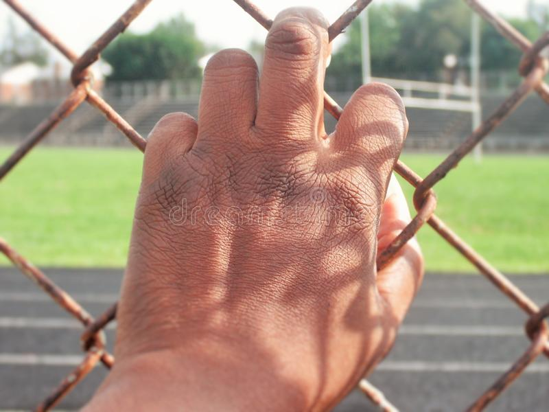 Hand on Fence royalty free stock images