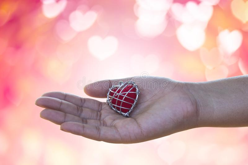 Hand is filing love lover or give Valentines gift under warm li royalty free stock images