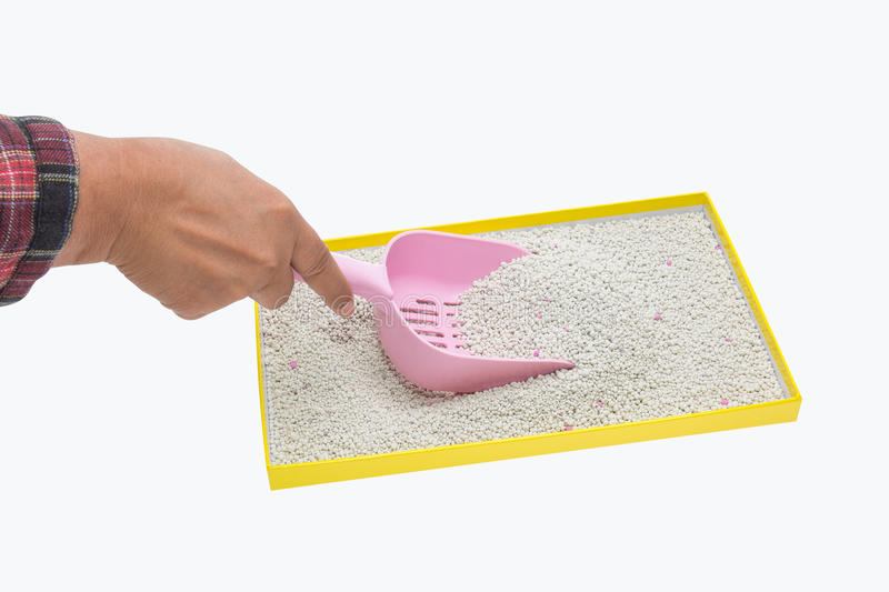 A hand filtering artificial sand with plastic shovel for cat. A hand filtering artificial sand with plastic shovel in tray after cat excrete for cleaning royalty free stock photos