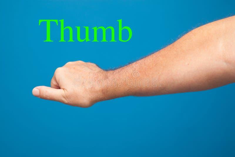 Hand, Finger und Faust, die Zeichen und Zeichen machen lizenzfreie stockbilder