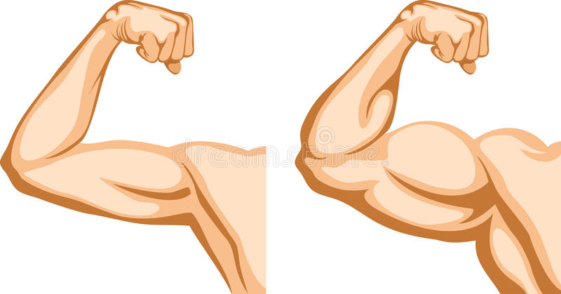Download Hand Before And After Fitness Stock Images - Image: 18942954