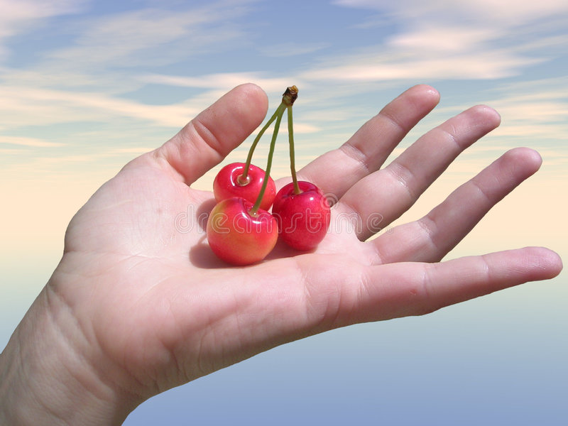 Hand with fruit royalty free stock photo