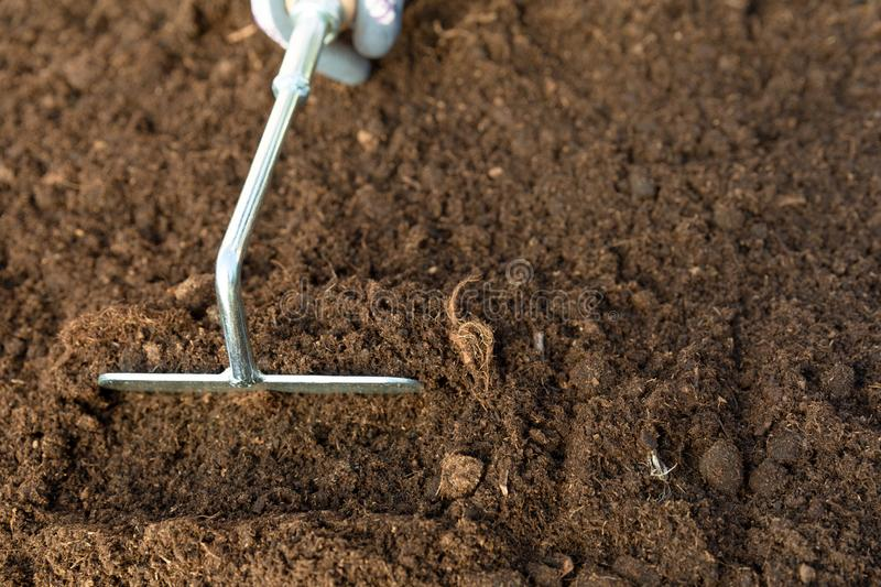 Hand of gardener woman digging a hole in soil with gardening tool. Spring garden work concept stock photography