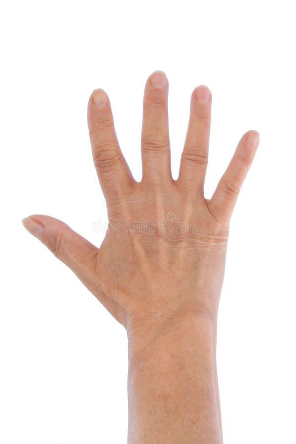 Hand geöffnet lizenzfreie stockfotografie