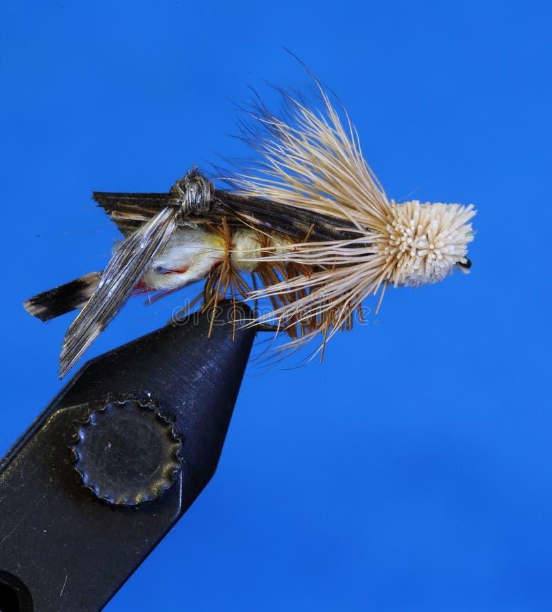 Hand gebundene Fliegenfischenfliege stockbild