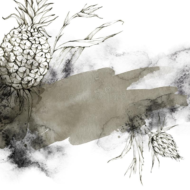 Hand geschilderd kader met ananassen, bladeren en waterverfplonsen Abstracte tropische illustratie in beige schaduwen royalty-vrije illustratie