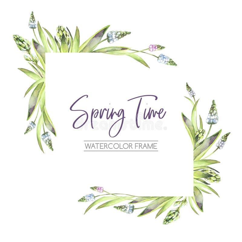 Hand geschilderd kader met Hyacintenbloemen en bladeren Hoekenelementen De illustratie van de de lentewaterverf botanisch stock illustratie