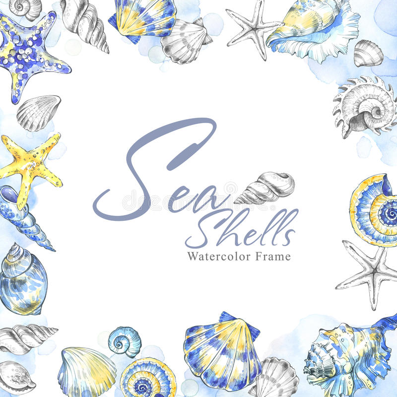 Hand geschilderd zeeschelpen vierkant kader Achtergrond van de waterverf de decoratieve zomer Originele hand getrokken illustrati vector illustratie