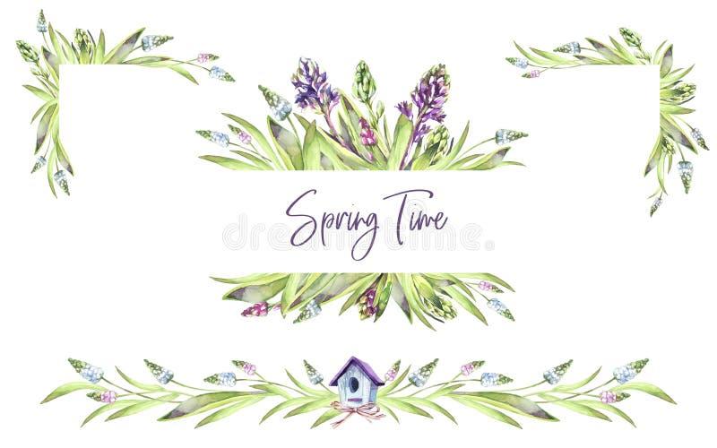 Hand geschilderde die kaders met Hyacintenbloemen en bladeren worden geplaatst De illustratie van de de lentewaterverf in violett stock illustratie