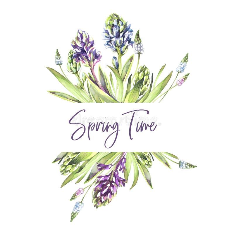 Hand geschilderde grenzen met Hyacintenbloemen en bladeren De illustratie van de de lentewaterverf in violette schaduwen botanisc royalty-vrije illustratie