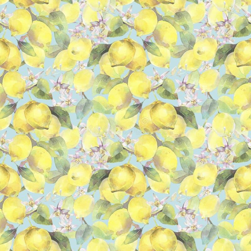 Hand geschilderde waterverfillustratie naadloos patroon met de branche-elementen van de citroenboom royalty-vrije illustratie
