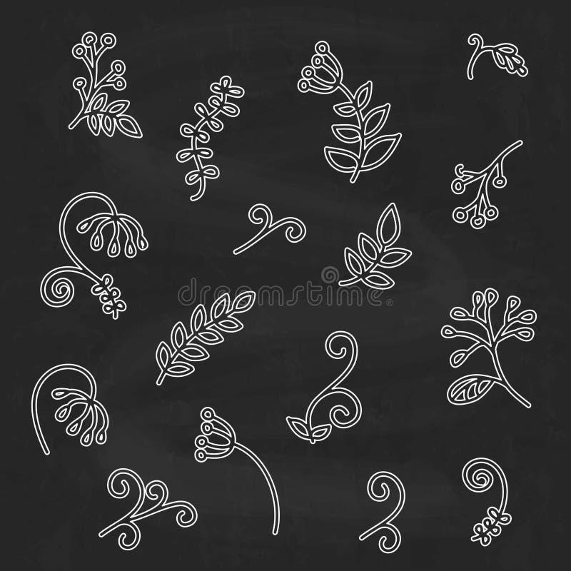 Hand getrokken abstracte bloemenelementen, schetsstijl vector illustratie