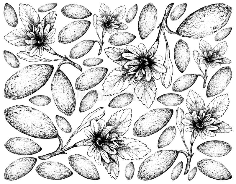 Hand Getrokken Achtergrond van Verse Banaan Passionfruits royalty-vrije illustratie