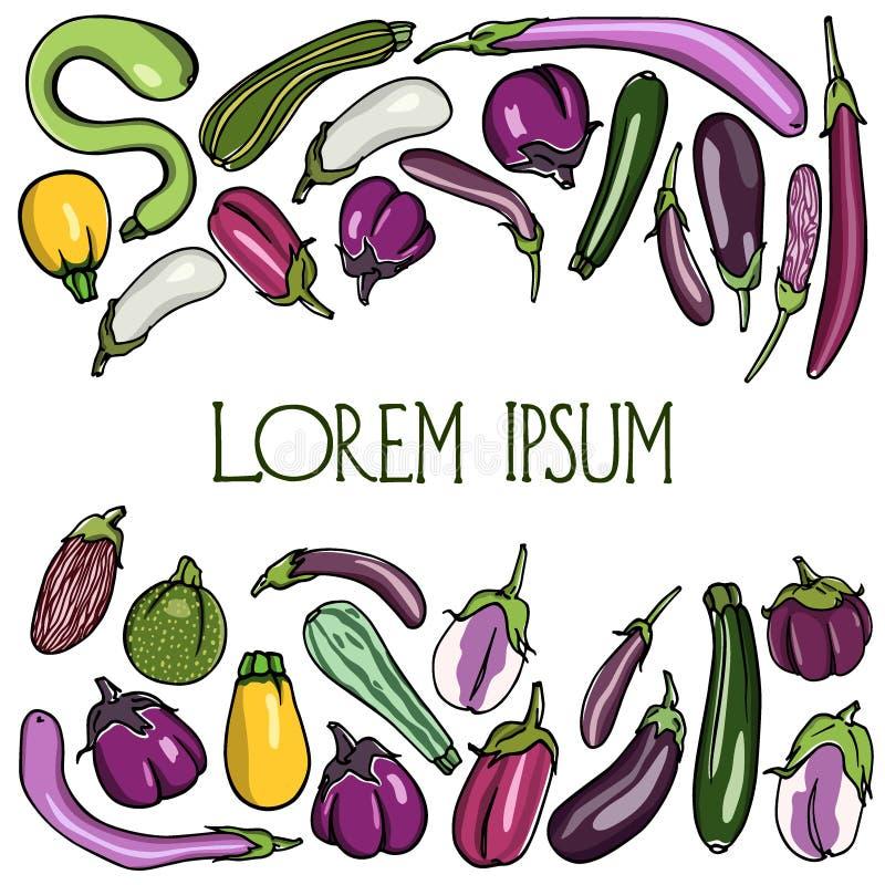 Hand getrokken aubergines en courgette royalty-vrije illustratie