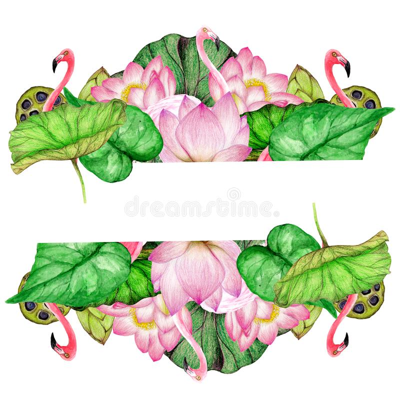 Hand getrokken banner van waterverfflamingo's, lotusbloembloemen stock illustratie