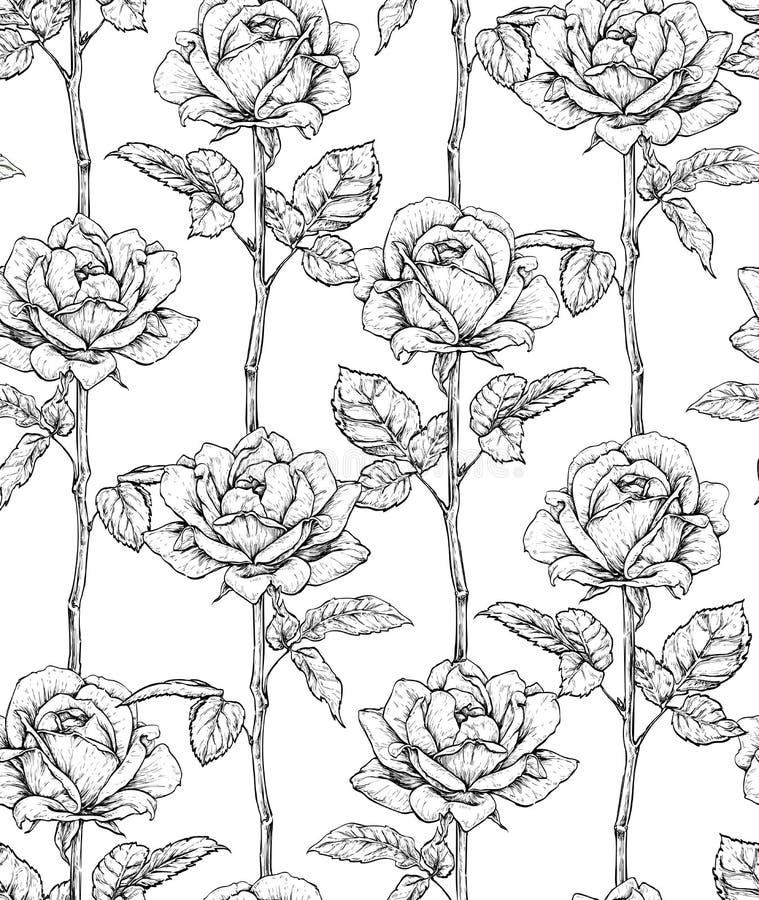 Hand getrokken bloeiende rozen Naadloos patroon met rozen Vector illustratie stock afbeeldingen