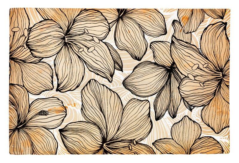 Hand getrokken bloemen op document achtergrond vector illustratie