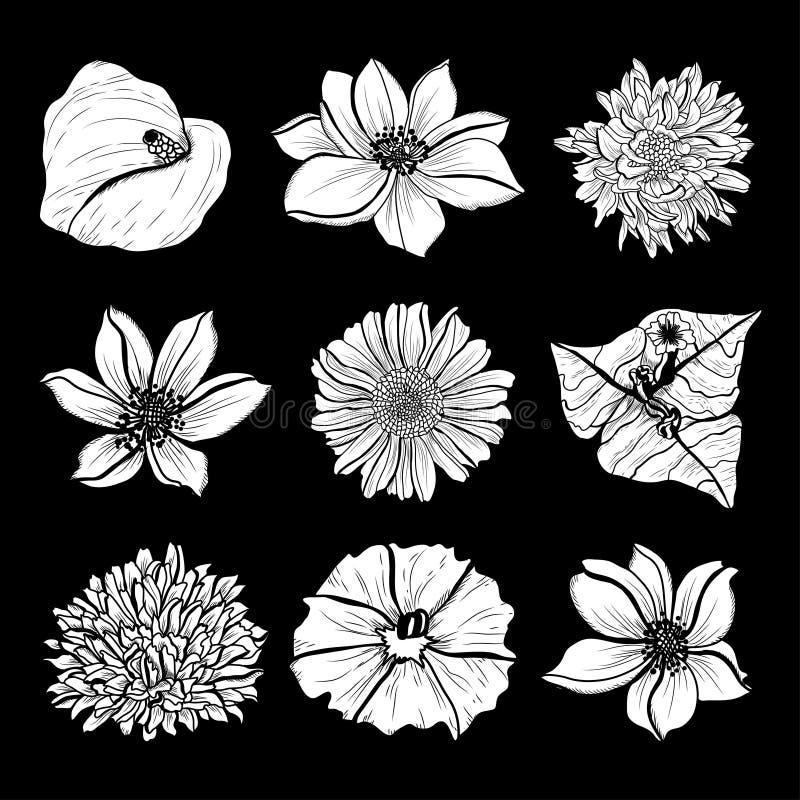 Hand getrokken bloemendecoratie vector illustratie