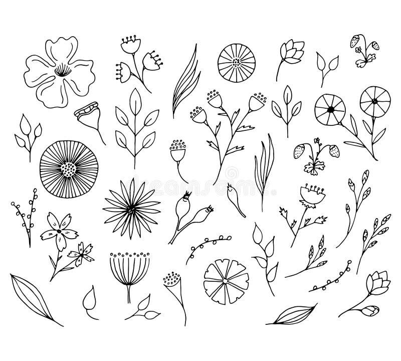 Hand getrokken bloemenelementen Geïsoleerde krabbelbloemen royalty-vrije illustratie