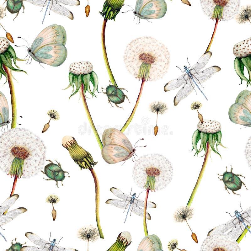 Hand getrokken botanisch naadloos patroon van tuinwildflowers, installaties royalty-vrije illustratie