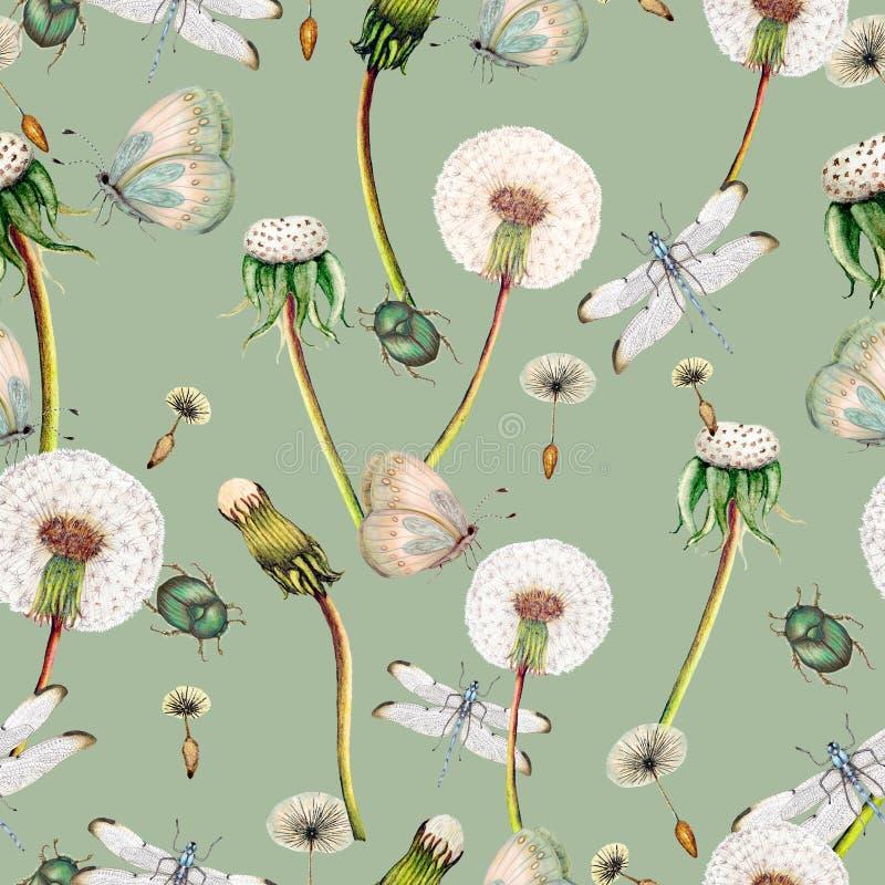 Hand getrokken botanisch naadloos patroon van tuinwildflowers, installaties stock illustratie