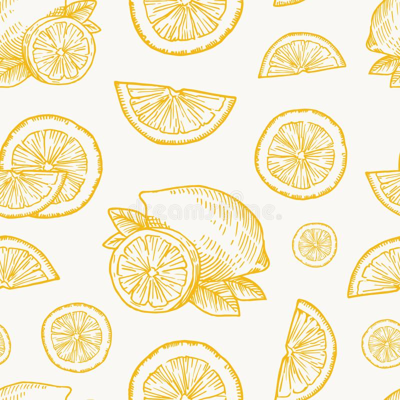 Hand Getrokken Citroen, Sinaasappel of Mandarijnoogst Vector Naadloos Patroon Als achtergrond Citrusvrucht en de Kaart van Blader royalty-vrije illustratie