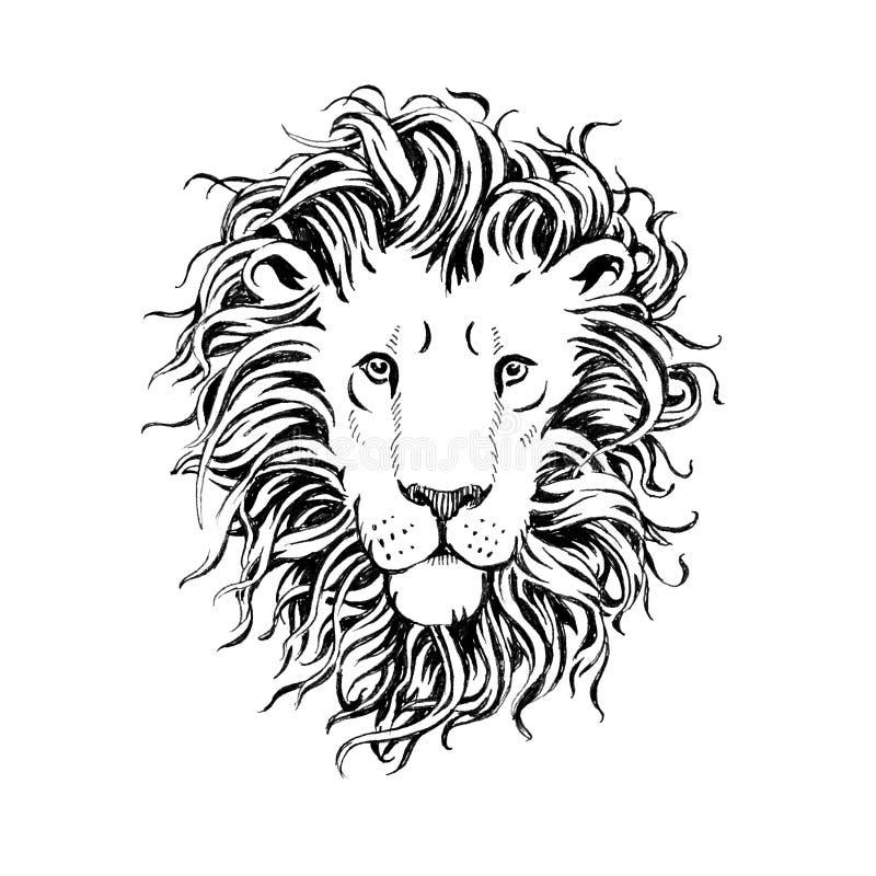 Hand getrokken die leeuwenhoofd op witte achtergrond wordt geïsoleerd royalty-vrije illustratie