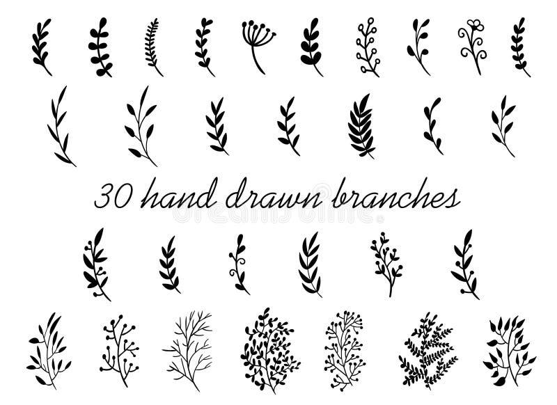 Hand getrokken die takken met bladeren op witte achtergrond worden geïsoleerd Decoratieve bloemenelementen voor uw ontwerp Uitste royalty-vrije illustratie