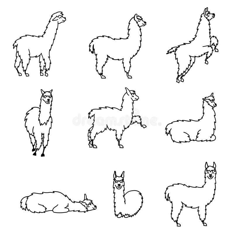Hand getrokken dierlijke guanaco van Peru, alpaca, vicuna royalty-vrije illustratie