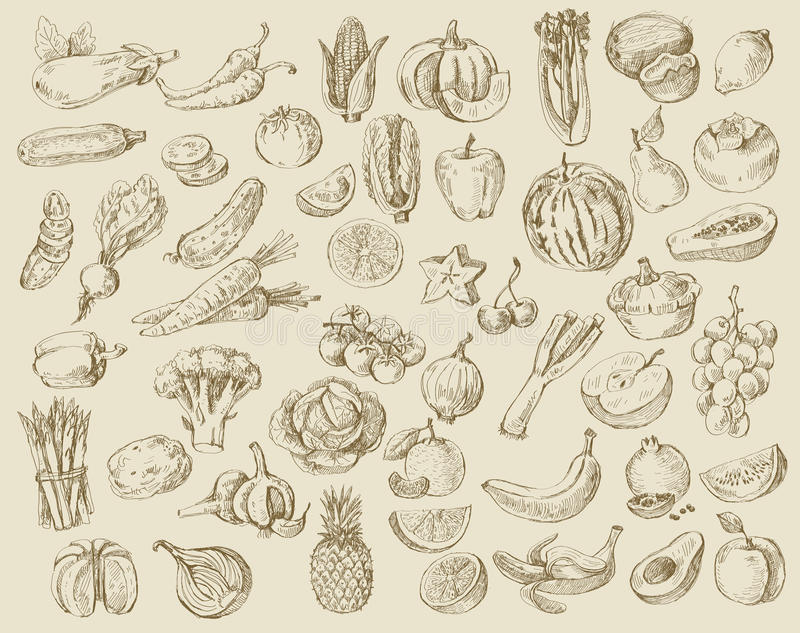 Hand getrokken fruit en groenten vector illustratie