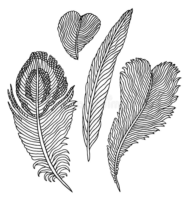 Hand getrokken geplaatste veren vector illustratie