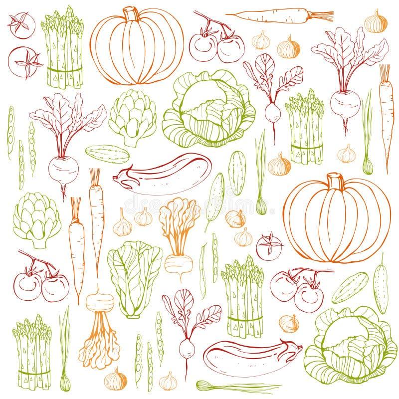Hand getrokken groenten Het kan voor prestaties van het ontwerpwerk noodzakelijk zijn royalty-vrije illustratie