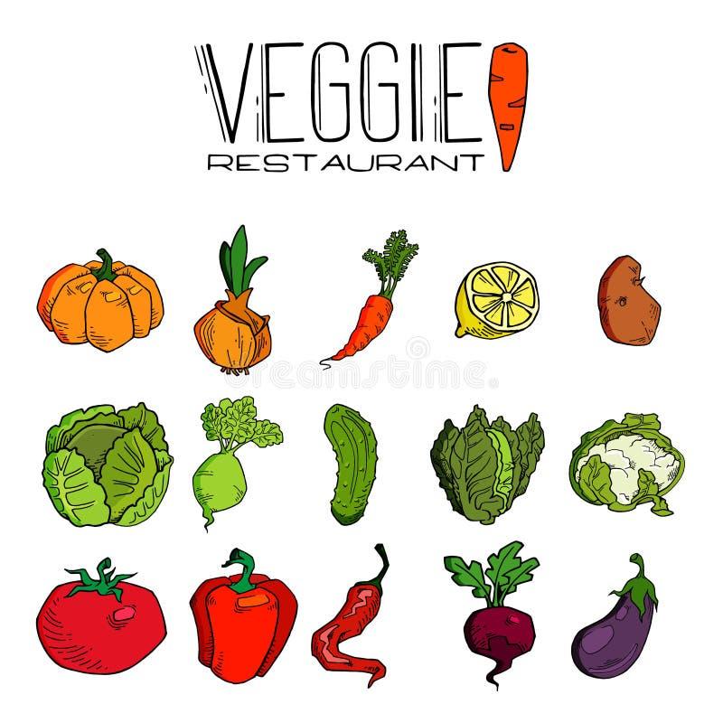Hand getrokken groenten naadloos patroon Gezonde voedsel vectorachtergrond stock illustratie