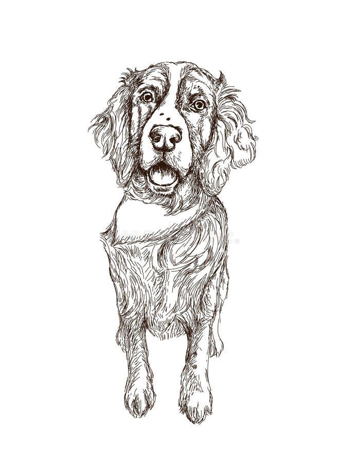 Hand getrokken hond stock afbeelding