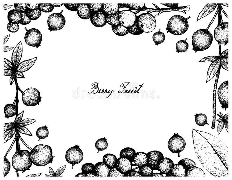 Hand Getrokken Kader van Calafate-Bes en van Antidesma Thwaitesianum Vruchten royalty-vrije illustratie