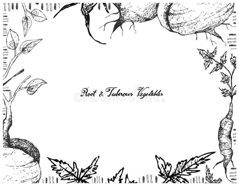 Hand Getrokken Kader van Jicama of Arracachaon royalty-vrije illustratie