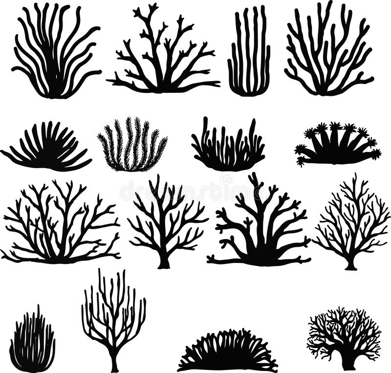Hand getrokken koralen op wit Silhouetpictogrammen vector illustratie