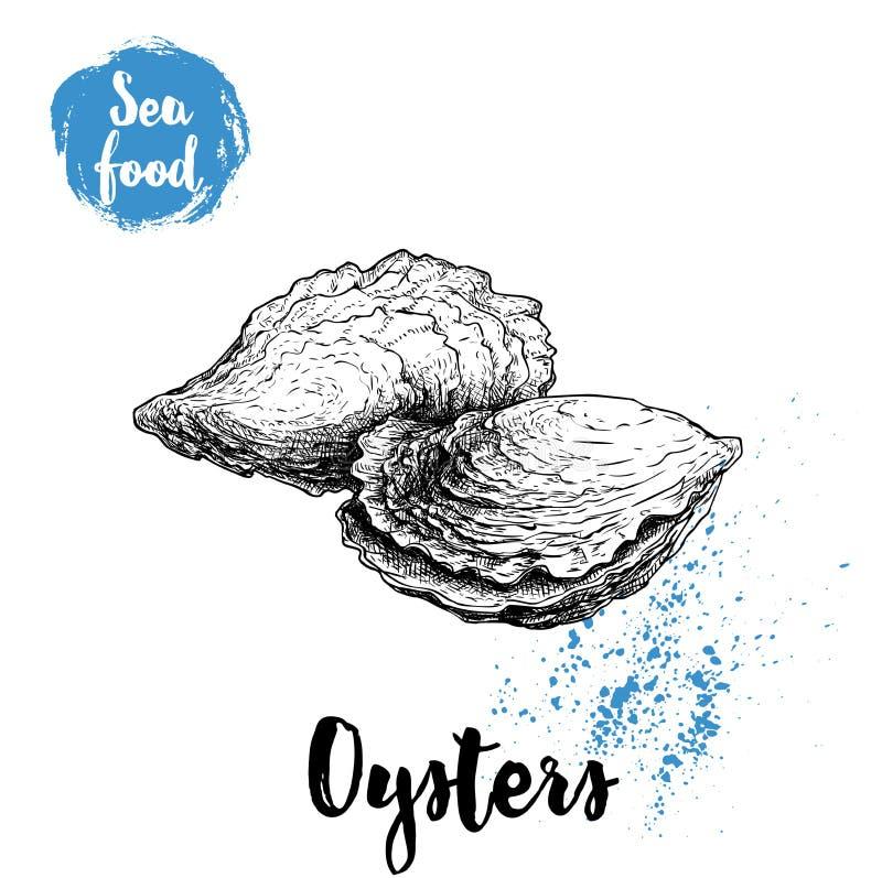 Hand getrokken oesterssamenstelling De stijlillustratie van de zeevruchtenschets Verse mariene weekdieren in gesloten shells vector illustratie