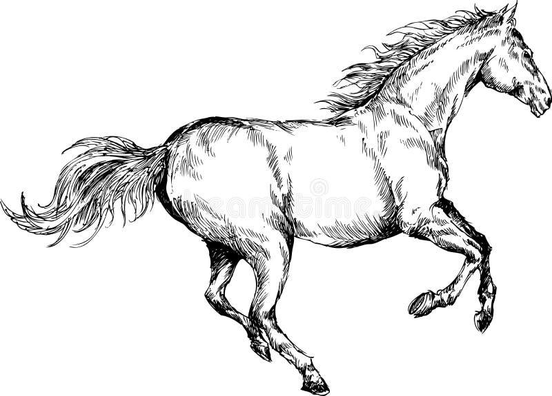 Hand getrokken paard royalty-vrije illustratie