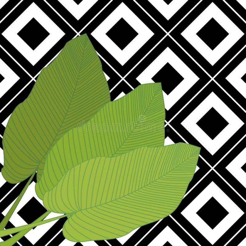 In hand getrokken patroon met kleurrijk banaanblad getrokken overzicht op geometrische zwart-witte achtergrond tropisch vector illustratie