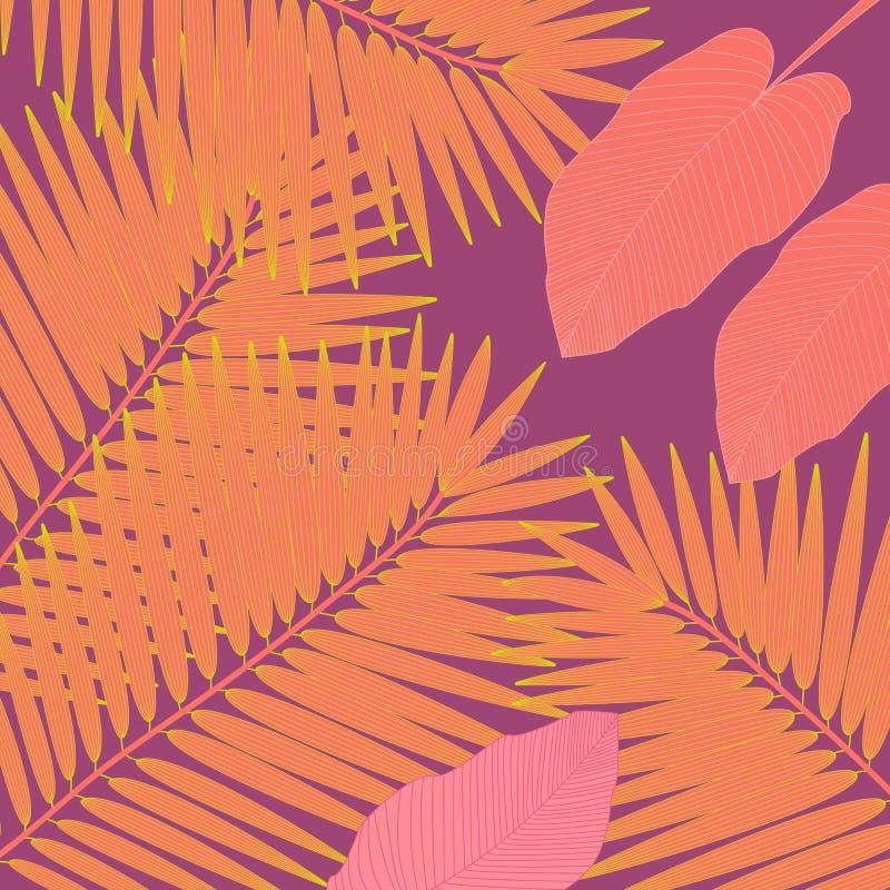 In hand getrokken patroon met kleurrijk banaanblad getrokken overzicht op witte achtergrond Tropische bladeren, wildernispatroon royalty-vrije illustratie
