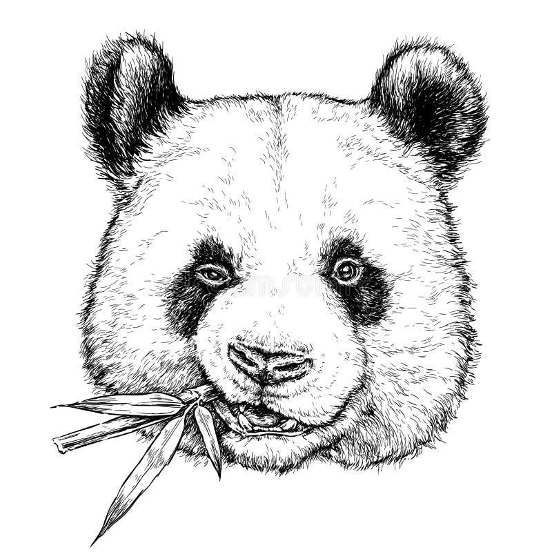Hand getrokken portret van Grappige Panda met bamboetak Vectordieillustratie op wit wordt geïsoleerd royalty-vrije illustratie