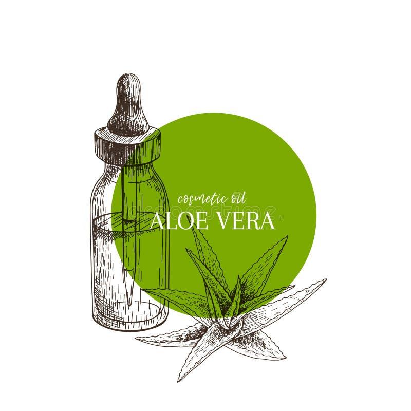 Hand getrokken reeks etherische oliën De vectortak van aloëvera Geneeskrachtig kruid met de fles van het glasdruppelbuisje Gegrav stock illustratie
